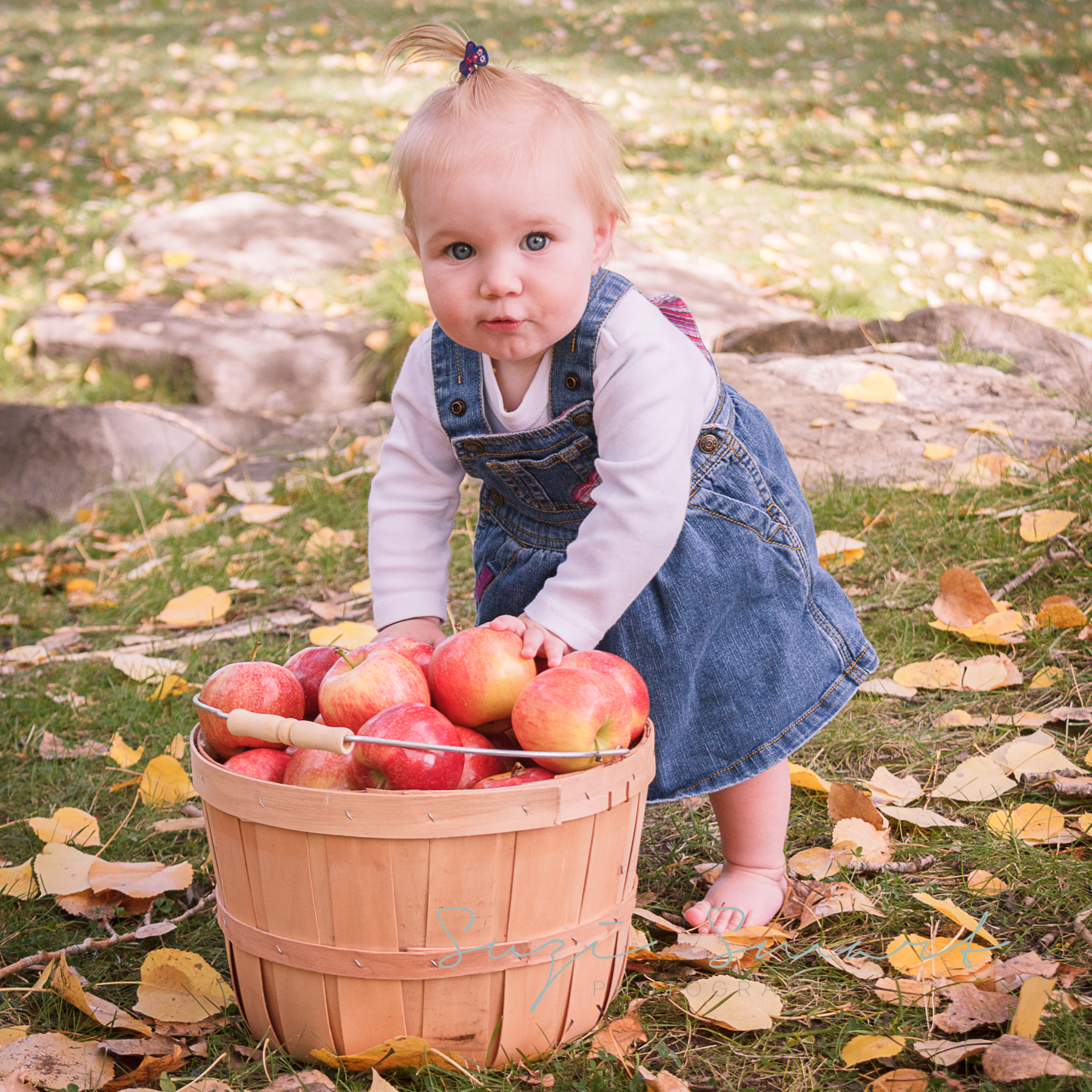 Victoria BC, Family Photography - Fall Colours Child with Apples
